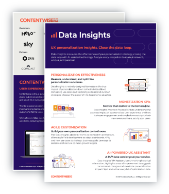 Data Insights Flyer